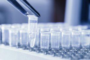 Генетическая экспертиза ДНК